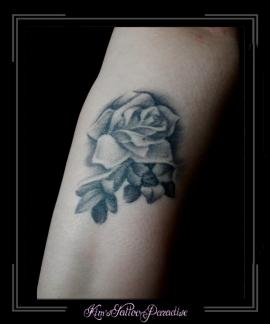 bloemen rozen