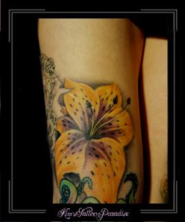 bloemen,lelie,kleur,bovenbeen,