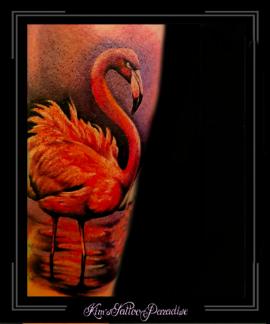 flamingoonderbeen