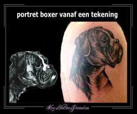 portret boxer vanaf tekening