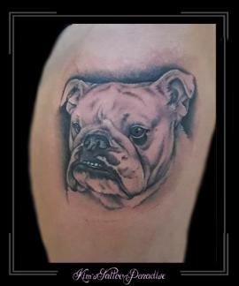 portret bulldog hond bovenbeen1