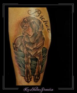 portret hond labrador namen kuit