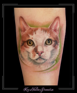 portret poes kat onderarm.1png