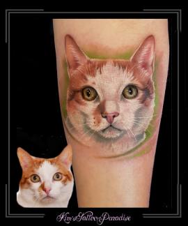 portret poes kat onderarm