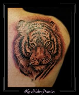 tijger schouder roofdier