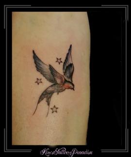 vogel,sterren,onderarm,