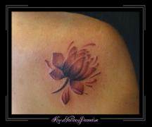 bloem roze-paars schouder