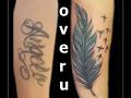 coverup veer veren vogels onderarm