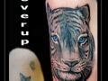 coverup,tijger,bovenarm,roofdier,