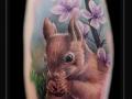 eekhoorn-bloesem-bloemen-bes-bovenarm-squirrel
