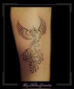 fenix,phoenix,onderarm,