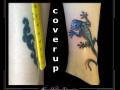 salamander coverup