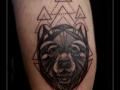 hond abstract driehoeken lijnen kuit