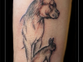 hond, konijn, arm, schets, tekening