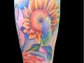 kolibrie zonnebloem