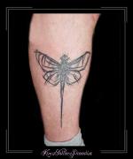 insec libel libelle kuit