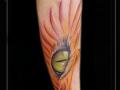kattenoog oog vleugels vlammen onderarm