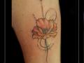 klaproos,bloemen,pijl,onderarm,