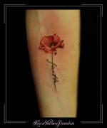 klaproos,bloemen,tekst,onderarm,