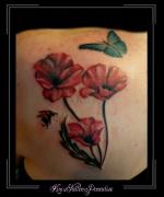 klaprozen,klaproos,bloemen,bij,vlinder,schouder,full color