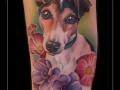 portret jack russel terrier onderarm