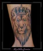 leeuw kroon pols