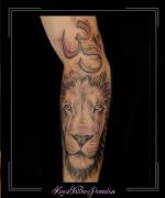 leeuw portret 3 ohm teken arm