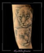 leeuw,welp,welpen,bovenarm,