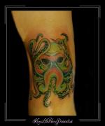 octopus inktvis knie