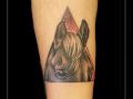 paard driehoek onderarm