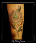 passiebloem,bloemen,namen,onderarm,kleur,