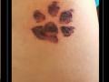 pootafdruk, hond, bovenbeen,