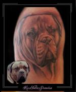 portret bordeau dog bovenarm
