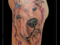 portret hond watercolor bovenarm