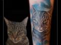 portret poes kat dier onderam