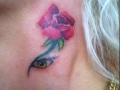 roos en oog
