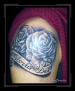 rozen voor gloria