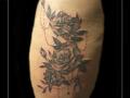 rozen,roos,bloemen,bovenbeen,kant,