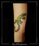 salamander onderbeen