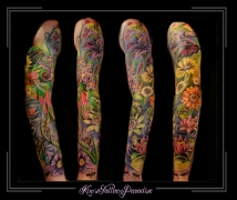 sleeve full color