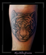 tijger onderarm
