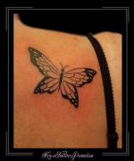 vlinder,schouder