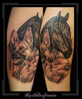 portret varkentje, paard, hond