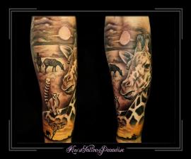 giraffe,stokpaard,olifant,zebra,jungle,safari,ondergaande zon,onderarm,