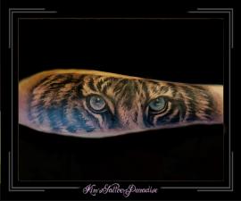 ogen tijger onderarm