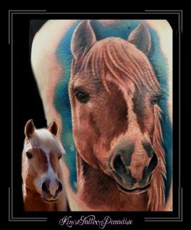 paard portret dier bovenbeen1