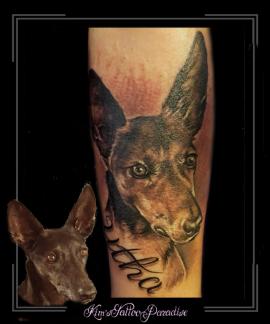 portret,hond,podenco,utah,onderarm2,